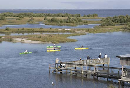 Watch the kayaks and fishermen from Tranquility in Cedar Key.